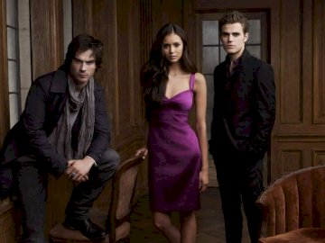 The Vampire Diaries - les journaux de vampires stefan elena damon