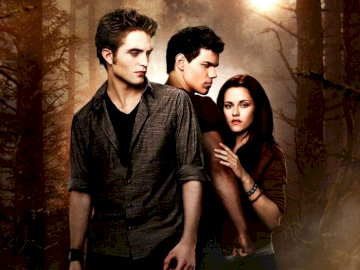 The twilight - The twilight wolves and vampires