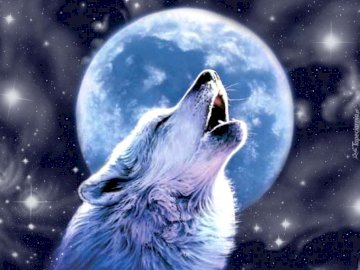 Wolf and moon - Wolf Howling To The Moon