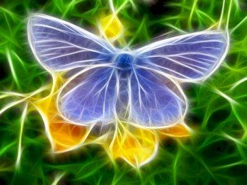 Butterfly On A Flower - Blue Butterfly On The Flower