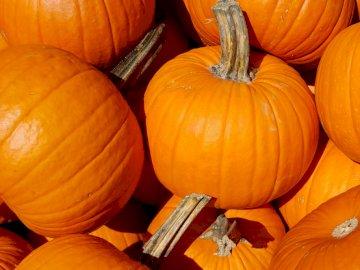 Pumpkins / Citrouilles - Closeup photo of pumpkins.