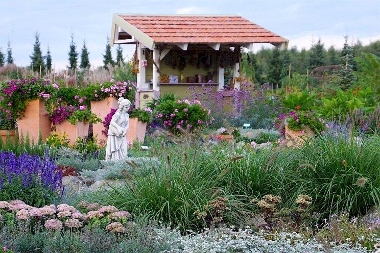Jardim De Lavanda - Jardim de alfazema, Hortulus, Dobrzyca (9×12)