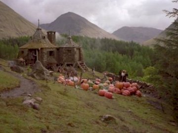 Hagrid's House - This is Hagrid's house ... It has grown so large that it can no longer fit in.