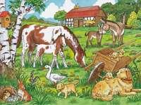 Zwierzęta na wsi. - Układanka dla dzieci: zwierzęta.