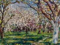 flowering orchard - W. Jarocki