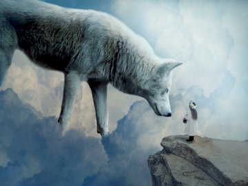 the white wolf and the girl - the white wolf and the girl