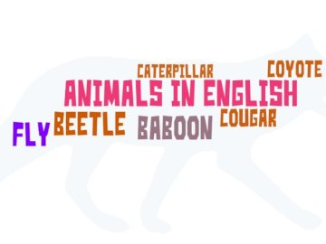 Animals in English - Puzzle - Solve puzzles with animals in English.