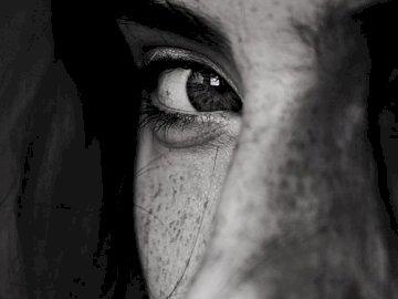 La vista - Le pietre sono grezze, smussano la mia zampa, ma le parole non mi faranno mai del male.