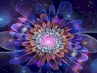 Flores no espaço