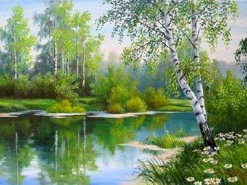 Piękna natura - Piękna natura , brzozy , jezioro