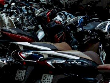 Ayúdame a llegar a casa | Venmo: - Lote de motonetas de colores variados. Estados Unidos
