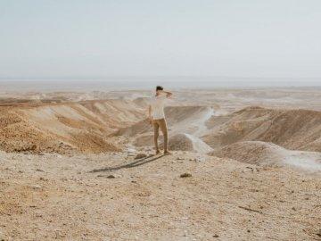 Patrząc na Negev - Mężczyzna pozycja przy pustynią podczas dnia. Portland, Oregon