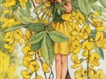 dívka като žlutý motýl