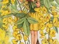 dívka като žlutý motýl - dívka като žlutý motýl