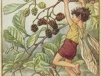 klučina se houpe na větvi - klučina se houpe na větvi