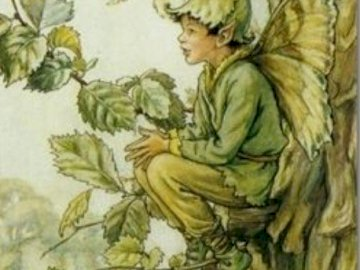 chlapec motýl sedí na stromě - chlapec motýl sedí na stromě