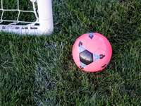 Almost, sport - Pink rubber ball beside goal net. Cache Valley Utah
