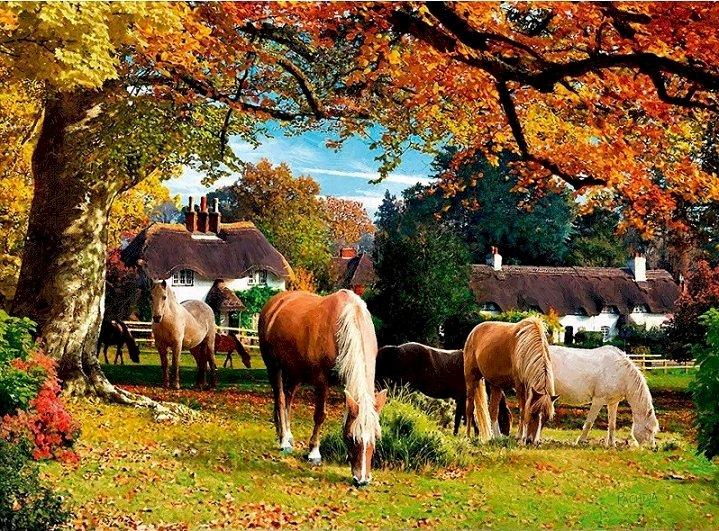 Jesień w Hampshire. - Anglia. Jesień w Hampshire.