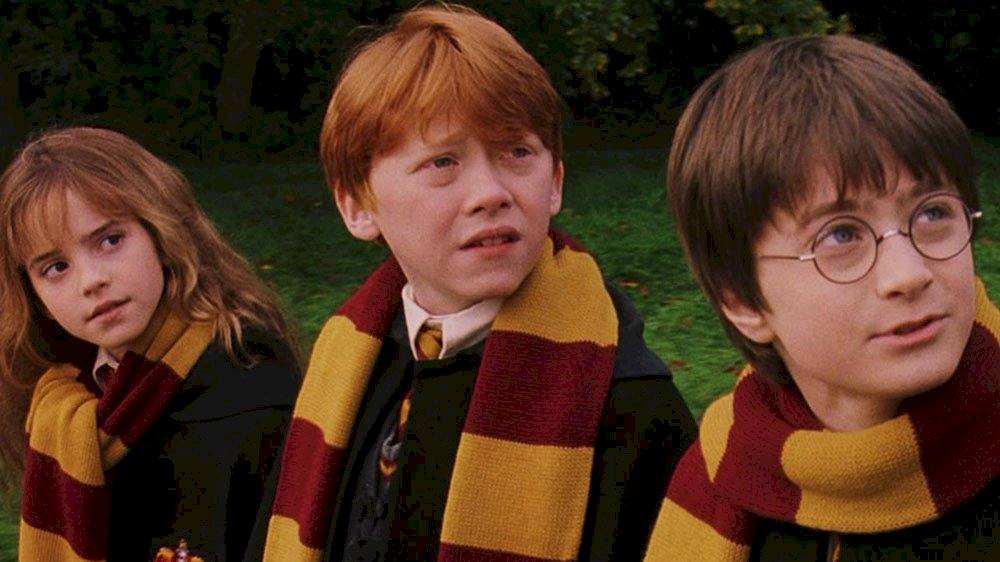 Harry Potter - Ron, Hermione och Harry (4×2)