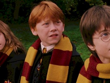 Harry Potter - Ron, Hermione en Harry