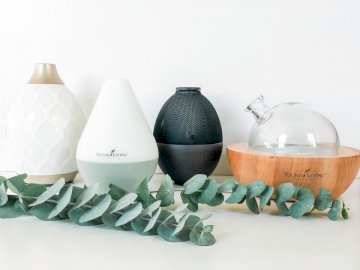 Oil diffusers with eucalyptus - Four assorted-color humidifier.