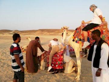 Pustynna wycieczka Egy - Wycieczka na pustynię