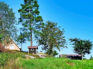 House & Shed near Lake Floen, - Green-leafed tree under blue sky.