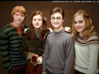 Harry, Ginny, Ron e Hermione