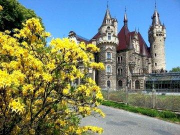 A pearl of the Opole region - Pearl of the Opole region, castle in Moszna, flowering azaleas