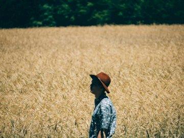 Seul dans un champ agricole - Homme debout au champ de blé. Chicago