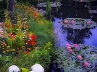 In a beautiful garden. - Flowers in a beautiful garden.