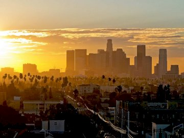 Los Angeles - Sunset over large buildings in the distance, palm trees and single-family houses