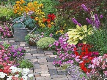 Letni ogród - Letni ogród , kwiaty , konewka , ścieżka
