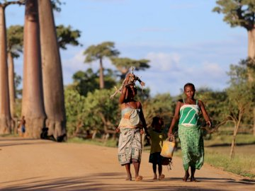 Our mini Madagascar photo - Woman wearing green dress while walking. Lithuania