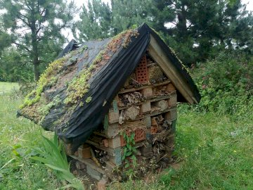 House - insect feeder - House - insect feeder