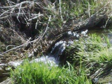 Krajobraz - Krajobraz - strumień    ..