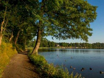 panorama - ścieżka wokół jeziorka w parku Olecko