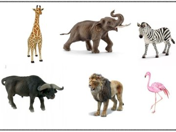 Puzzle animaux sauvages 3 - La tâche de l'enfant est de faire correspondre des éléments individuels afin qu'une ima