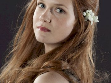 Ginny Weasley - Harry Potter pour toujours