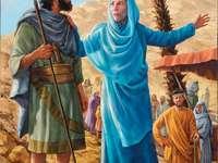 Prorokini Debora
