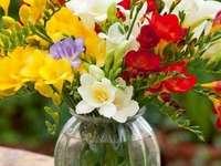 Freesia bouquet. - Puzzle: a bouquet of freesias.