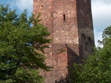 Kazimierzowska-torony