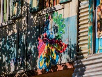 Kolorowy ptak siedzący w - Błękitni czerwoni i żółci graffiti na ścianie. Melbourne, Floryda