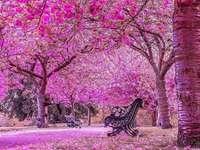 Rózsaszín világ.
