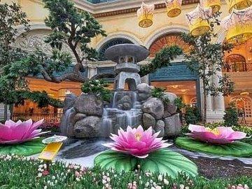 Jardín botánico - Jardín Botánico, Las Vegas