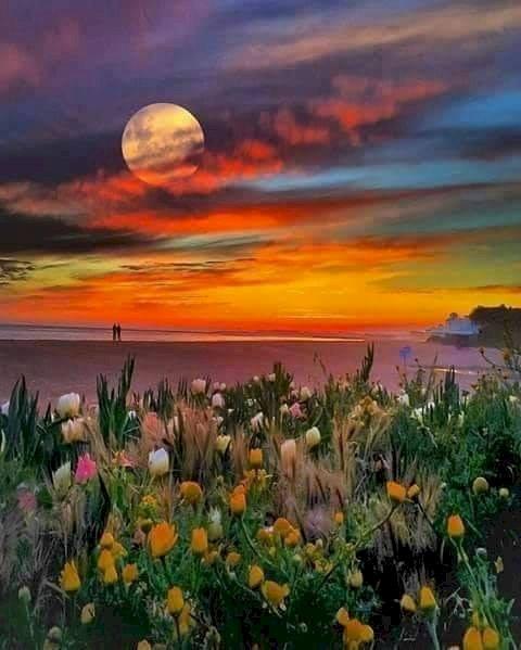 Západ slunce - Západ slunce na moři (10×10)