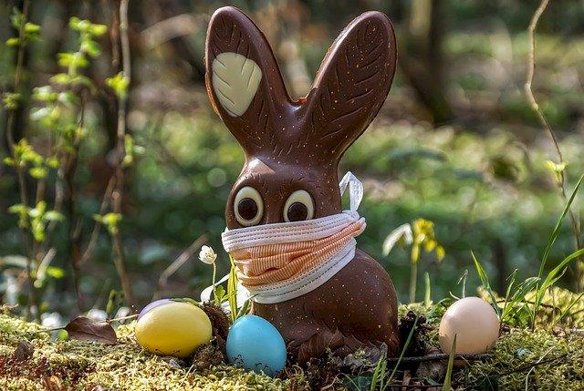 Kaninen är skyddad