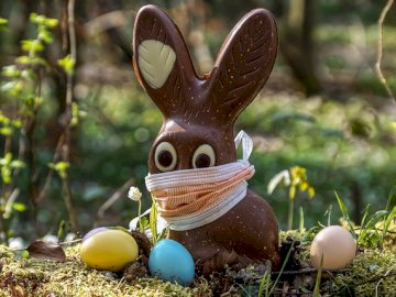 The bunny is protected - Easter rabbit in a mask