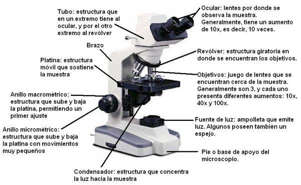 микроскоп - Микроскоп. Части от микроскопа. Микроскопични части (15×12)