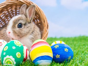 Easter - A basket with a rabbit and eggs